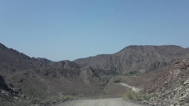 Wadi 21