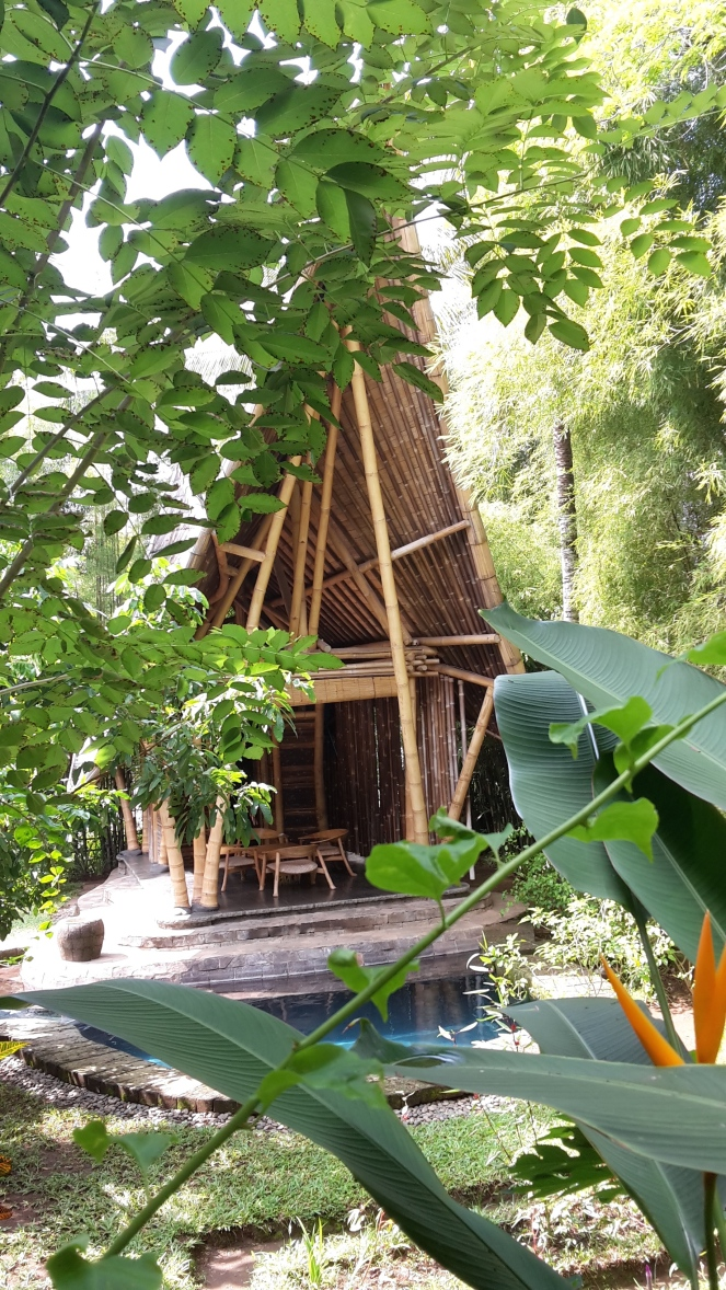 Bamboo house 2