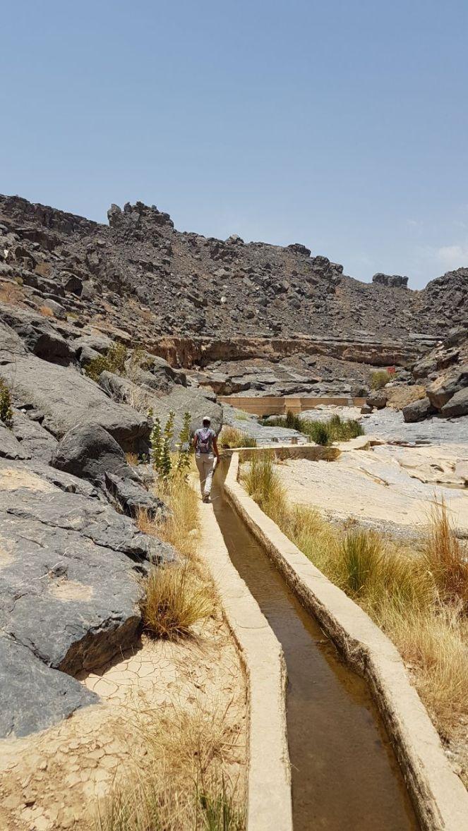 Wadi Damm 3
